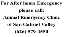 For After hours Emergency  please call:  Animal Emergency Clinic  of San Gabriel Valley  (626) 579-4550